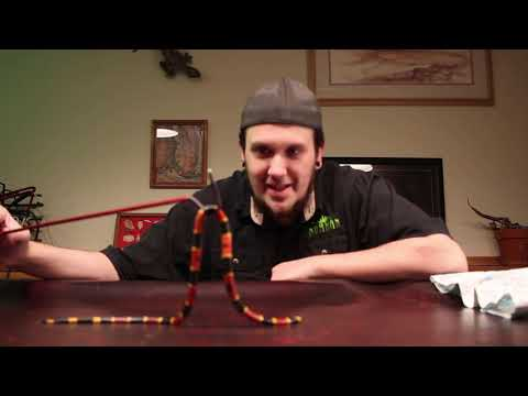 Unboxing The Most Venomous Snake In The United States.| Coral Snake
