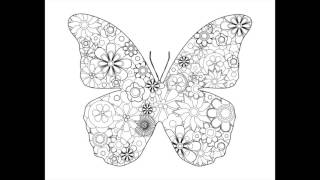 Fancy Flowers & Beautiful Butterflies • Oui Color Coloring Books