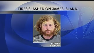 5 vehicles vandalized on James Island, suspect arrested