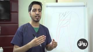 رواق: مدخل إلى طب الأسنان - المحاضرة 3 الجزء 2
