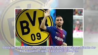 BVB - News und Gerüchte: Paco Alcacer für Spiel gegen Nürnberg wohl fit