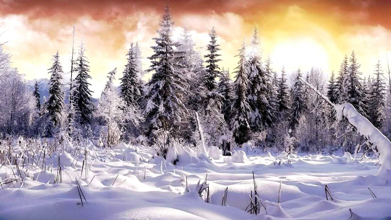 Pure Amp Cool Relaxing Xmas Instrumentals Amp Other
