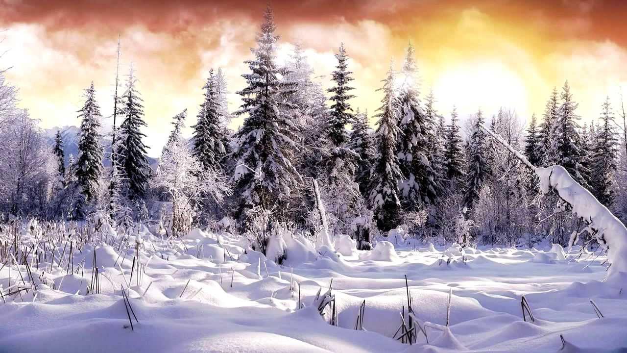 Snow Landscape Illustration