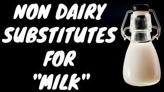 9 Best Non Dairy Substitutes for Milk