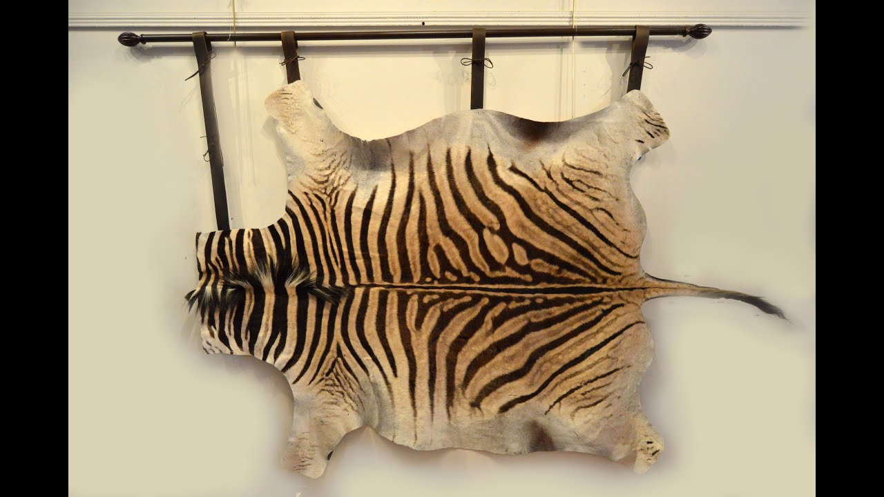 How To Hang A Zebra Skin On The Wall