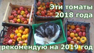 Сорта томатов которые возьму из 2018 в 2019