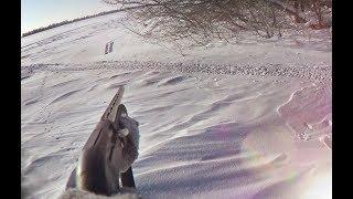 Охота на зайца троплением зимой! Секреты!