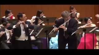 Souvenir de Adelina Patti, Op.42 - Franz Doppler  - Paul Edmund - Davies & Matthew Wu
