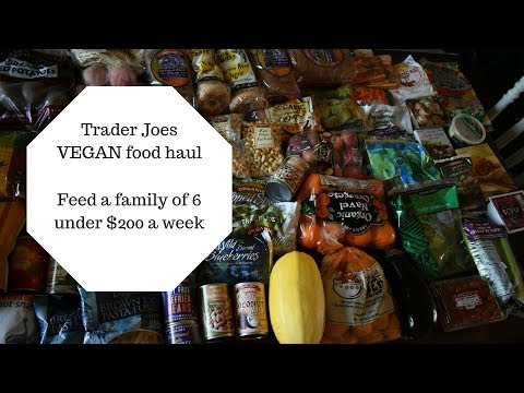 Trader Joes VEGAN food haul : Colorado Springs Vegan Family of 6 :Plant Based Budget