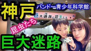 関西子供とお出掛け!神戸バンドー青少年科学館!!巨大迷路で遊んで来た!!