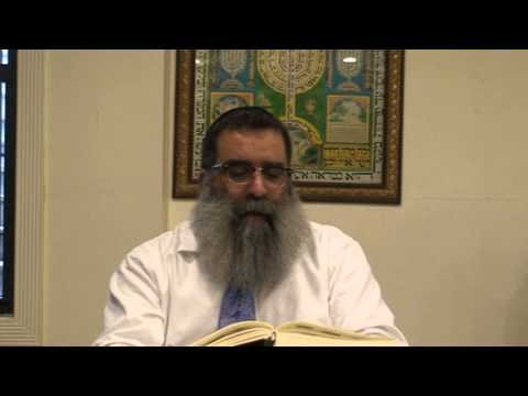 Daily Zohar: Borough Park is an example for Heaven