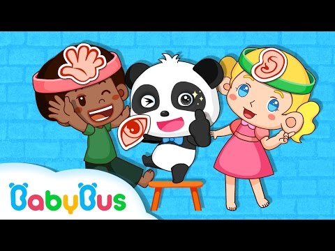 Our Body Parts | Game Preview | Educational Games for kids | BabyBus | Baby Panda
