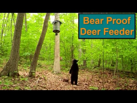 Diy Bear Proof Deer Feeder Setup Youtube