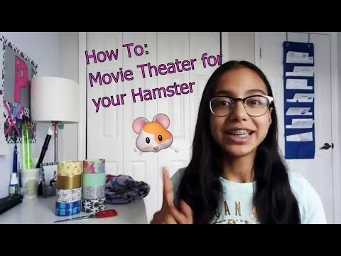 How to make a movie theater for your hamster!!! 🐹
