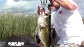 Art of Fishing Guide Service: Kissimmee Chain of Lakes Florida Bass...5 for 30lbs.