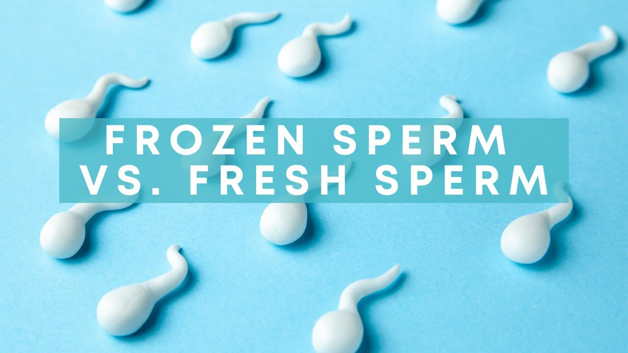 Apologise, frozen daschund sperm entertaining phrase
