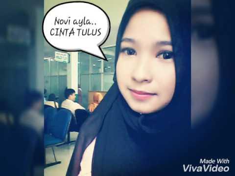 Novi ayla Cinta Tulus with Lyric