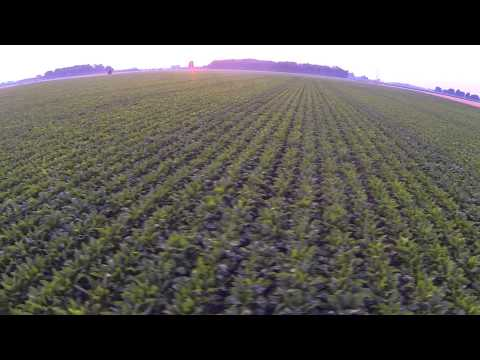 AERIAL VIDEO - CHATHAM-KENT ONTARIO
