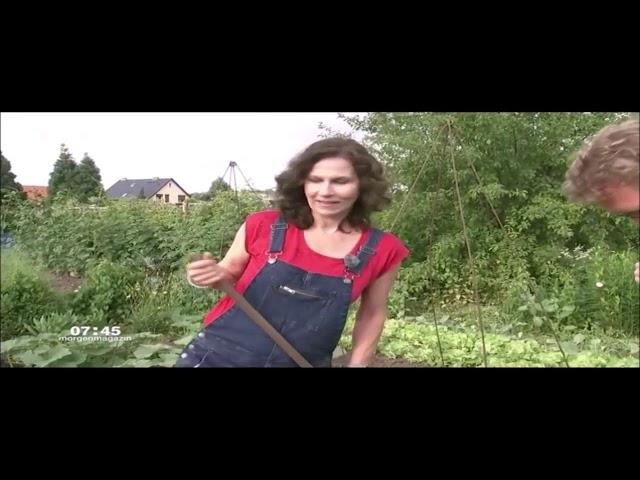 ZDF-Morgenmagazin: richtig gießen und Wasserverdunstung vermeiden