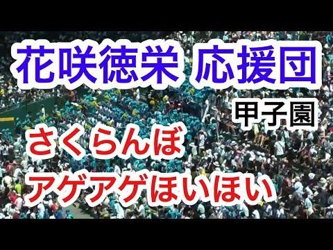 花咲徳栄 応援団 1回表 さくらんぼ あげあげほいほい ブラバン チアリーダー