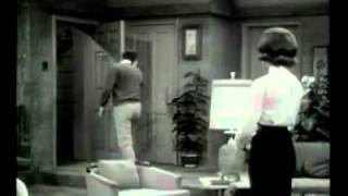 The Dick Van Dyke Show TV-Show (1961) , GIVE ME YOUR WALLS.
