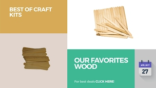 Our Favorites Wood Best Of Craft Kits