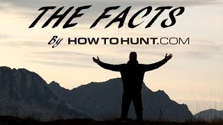 THE FACTS - Podcast News