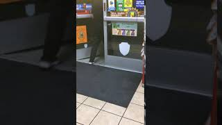 Funny cats walk to store