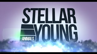 "Stellar Young ""Animals"" Official Lyric Video"