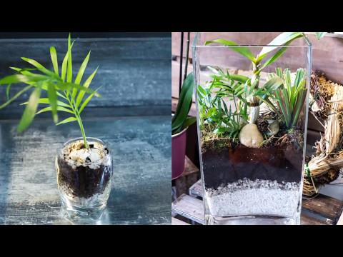 Animation vidéo pour la vitrine de  Marguerite Fleuriste  - MAI 2017