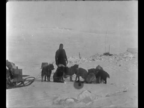 Amundsen's south pole expedition