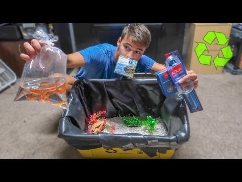 Mini RECYCLE BIN GOLDFISH TANK!!!