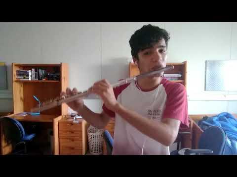 XXXTentacion - Sad! (Flute cover)