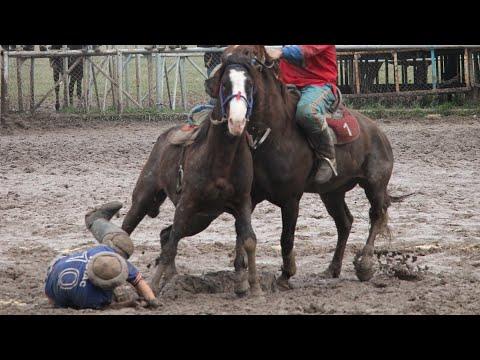 💥Ахиллес - лучшая лошадь! 🔥 Мыкты ат! The Best Horse!