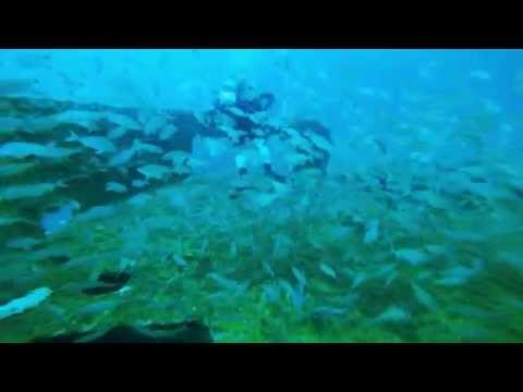 Diving The USS Strength,Finding Scuba Treasure. Panama City