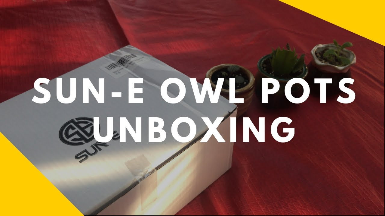 Download Sun E 2 5 Inch Owl Ceramic Pots Unboxing From Amazon 10 68