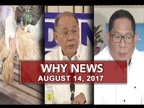 UNTV: Why News (August 14, 2017)