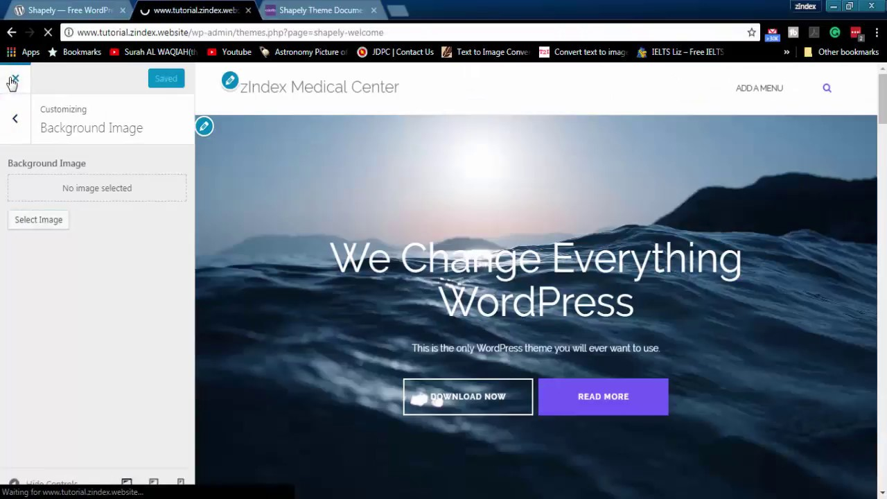 youtube wordpress theme