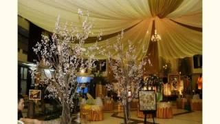 Outdoor Wedding Decoration Ideas On A Budget New(World of Wedding Ideas,wedding,weddings,wedding decorations,Wedding Decoration,decoration,Decorating,Decor,wedding reception,Interior Design,Interior ..., 2015-04-09T02:53:34.000Z)