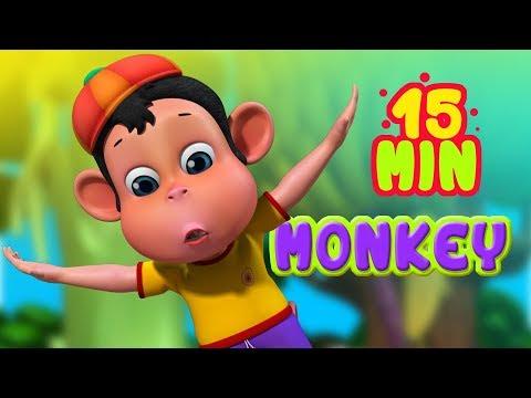 Monkey Scared of