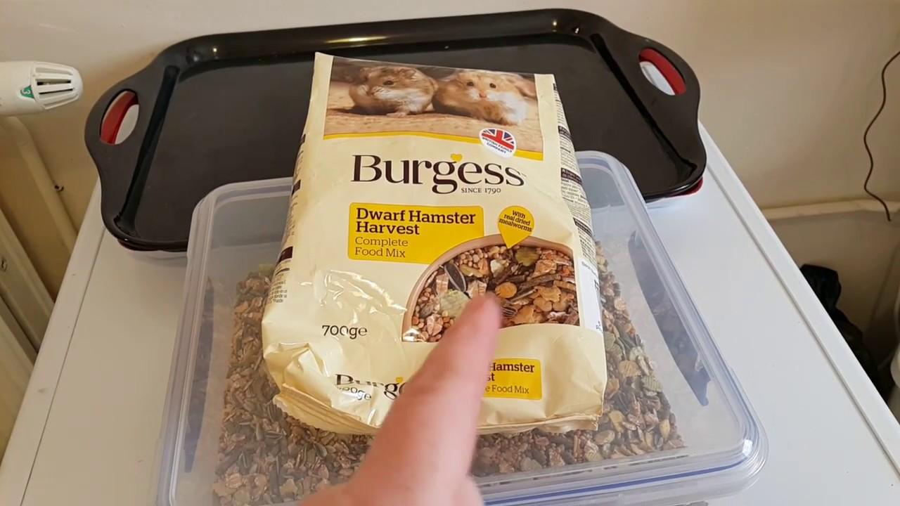 Hamster Food Review - Burgess Dwarf Hamster Harvest