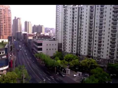 shanghai fun times: graduate edition
