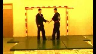 Рукопашный бой, 1 год обучения удары борьба приемы Ч3(Клуб Рукопашного боя