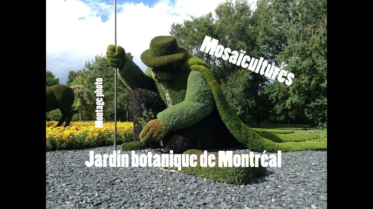 Mosa cultures jardin botanique de montr al youtube - Jardin botanique de montreal heures d ouverture ...