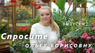 Спросите Ольгу Борисовну 2