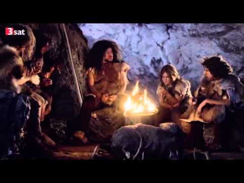 Der Neandertaler - Homo neanderthalensis