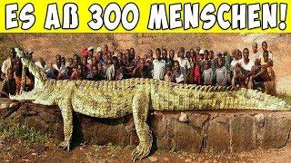 8 gefährlichste Tiere der Geschichte