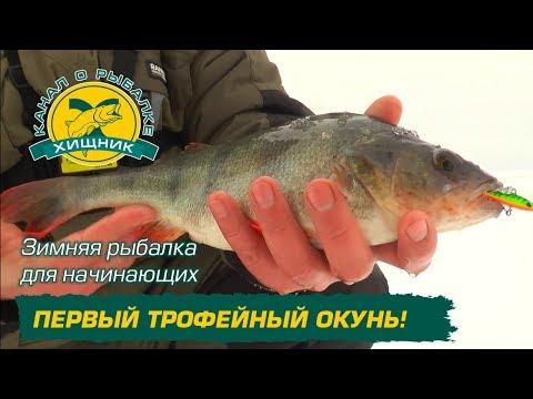 рыбалка для начинающих youtube