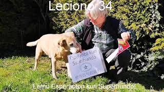 Lernu Esperanton kun Superhundo! – Leciono 34