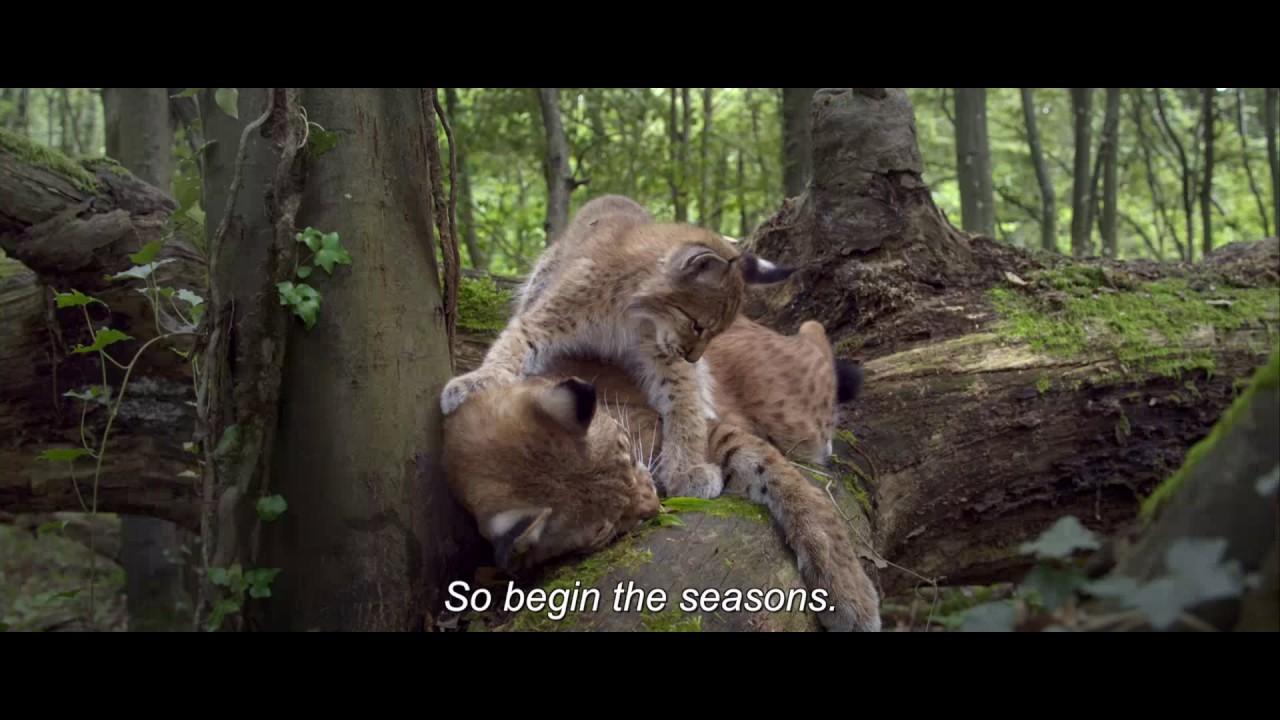 Времена года   Les saisons   Трейлер    2015